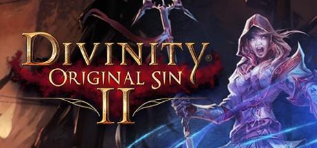 Divinity: Original Sin 2 не запускается