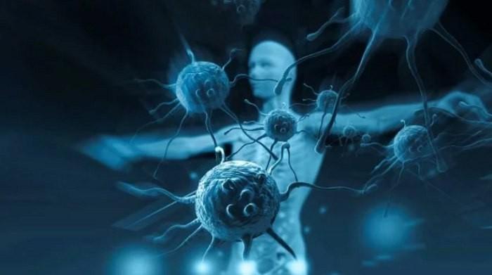 ИИ нашел 6 тыс. новых вирусов