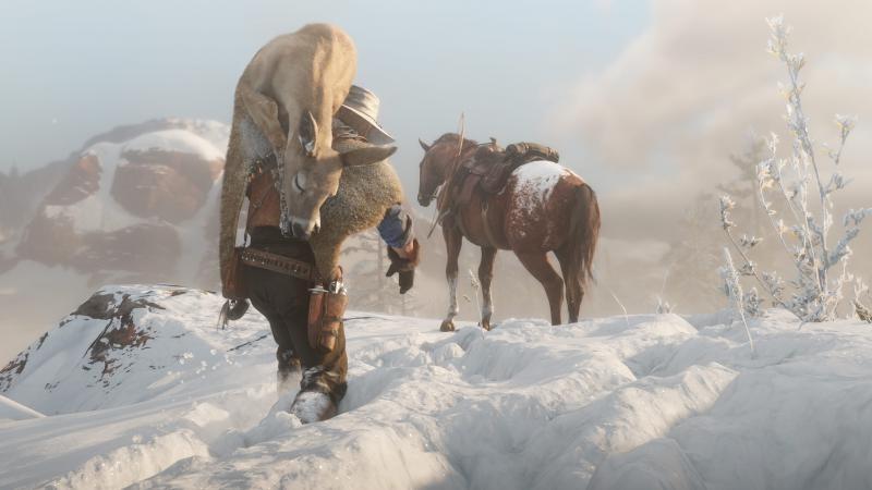 Лошади, охота и рыбалка в RDR 2